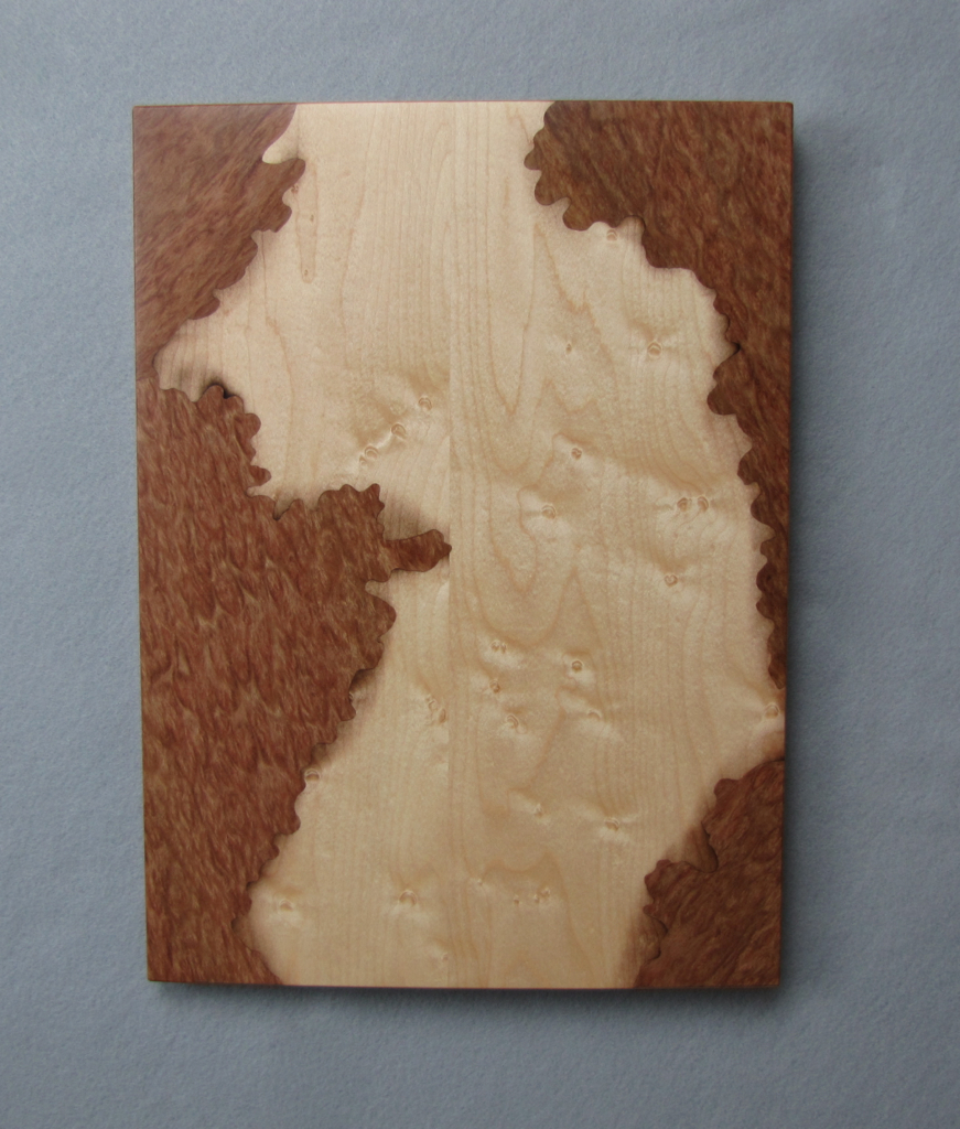 "Curved ""Sol Duc River"" Art Panel wall wood veneer"