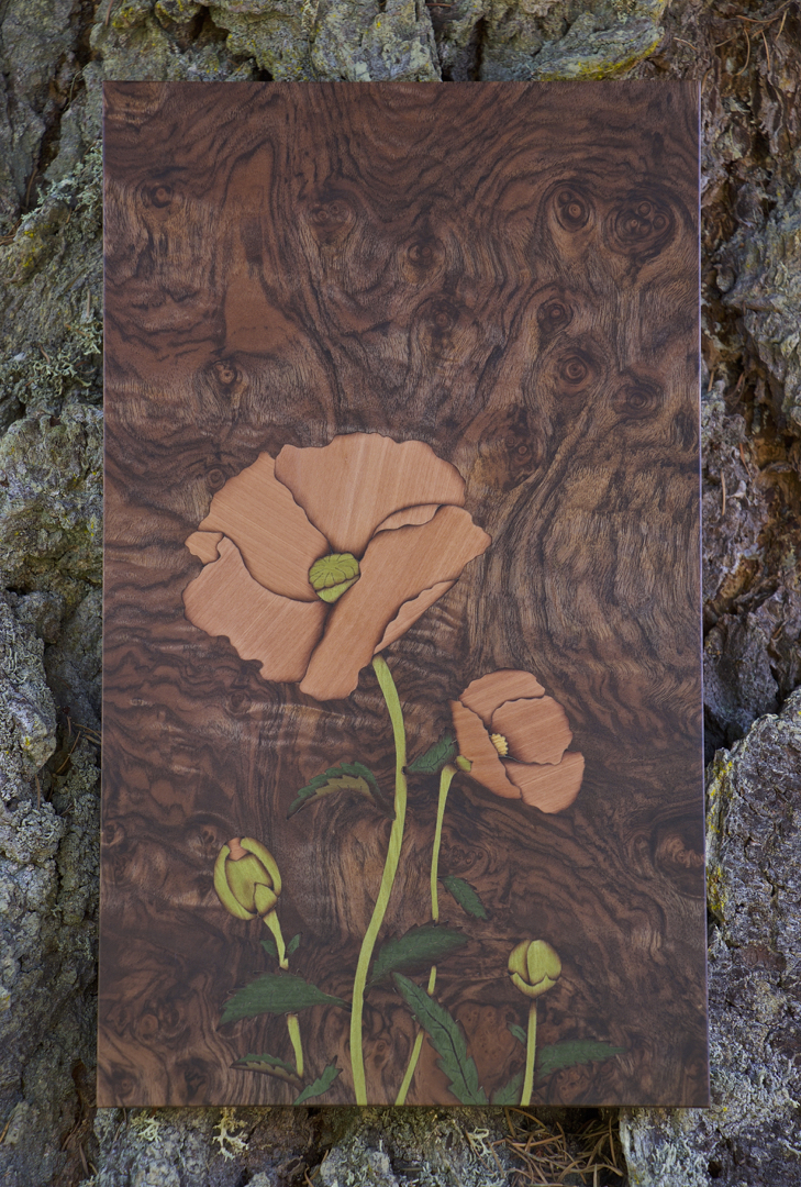 Poppy, Marquetry, woodwork, veneer, veneered art, art wall panel